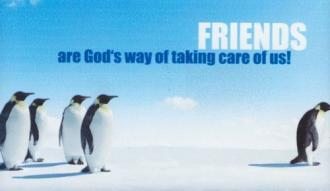 6493204 Magnet - Friends are God's Way of Taking Care of Us