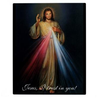BXS 014 Bilde - Jesus I Trust In You 30x40 cm