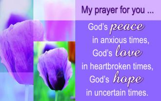 Kortpakke - My Prayer For You... God's Peace, Love, Hope (25 stk)